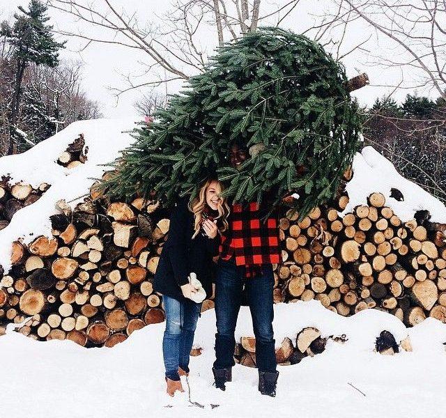 Amazing Winter Inspired Photos