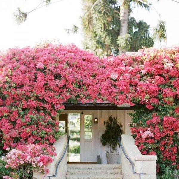 Decorating Your Deck/Patio/Garden: WOW Spaces & Ideas
