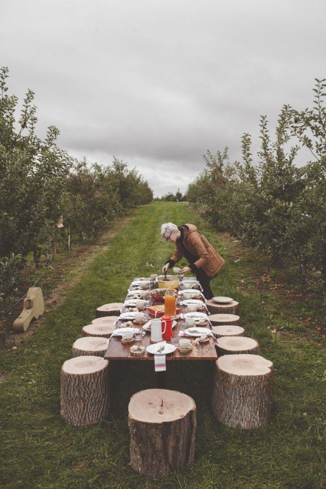 An Orchard Brunch with Poppy Barley - offbeat + inspired