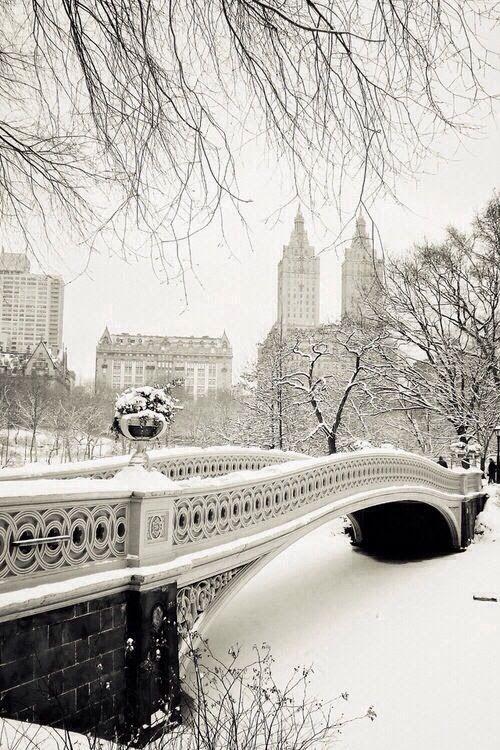 central park: